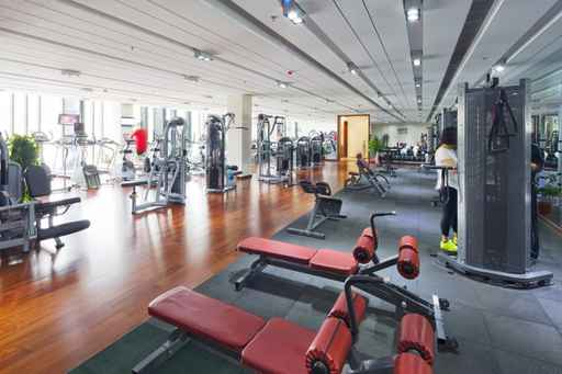 apparatus and equipment in modern gym